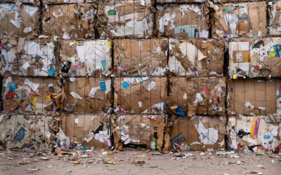 Biologiczne przetwarzanie odpadów – zagrożenia dla środowiska