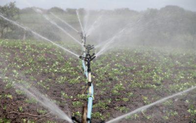 Dotacje nainwestycje wnawadnianie wgospodarstwach.