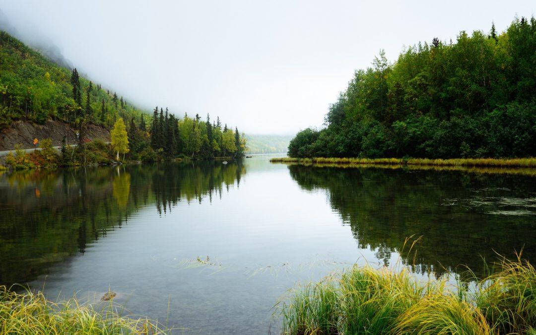 Waloryzacja środowiska przyrodniczego